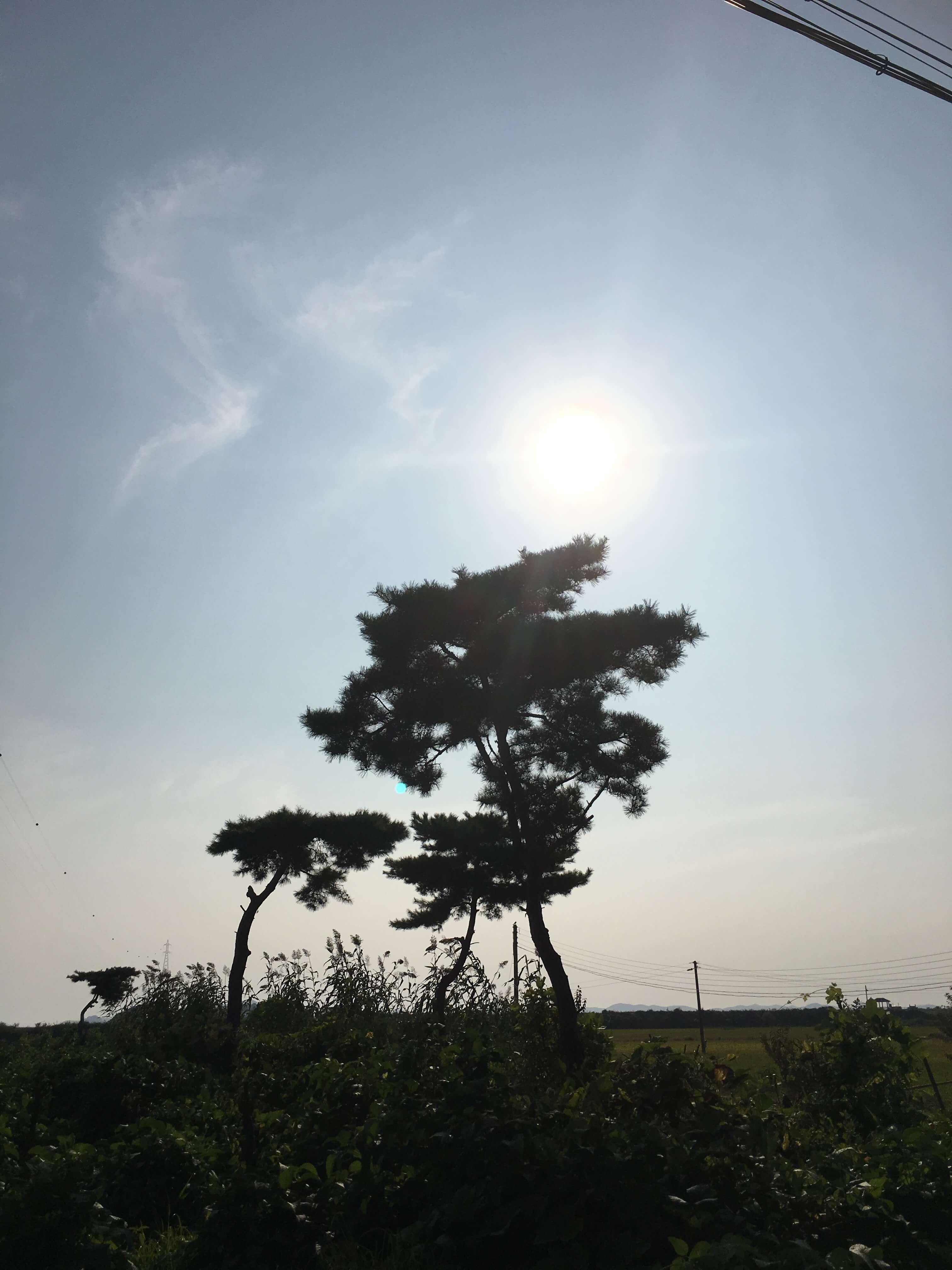 2017_09_02_IMG_1653.JPG
