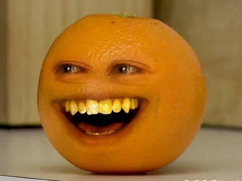 오렌지.jpg
