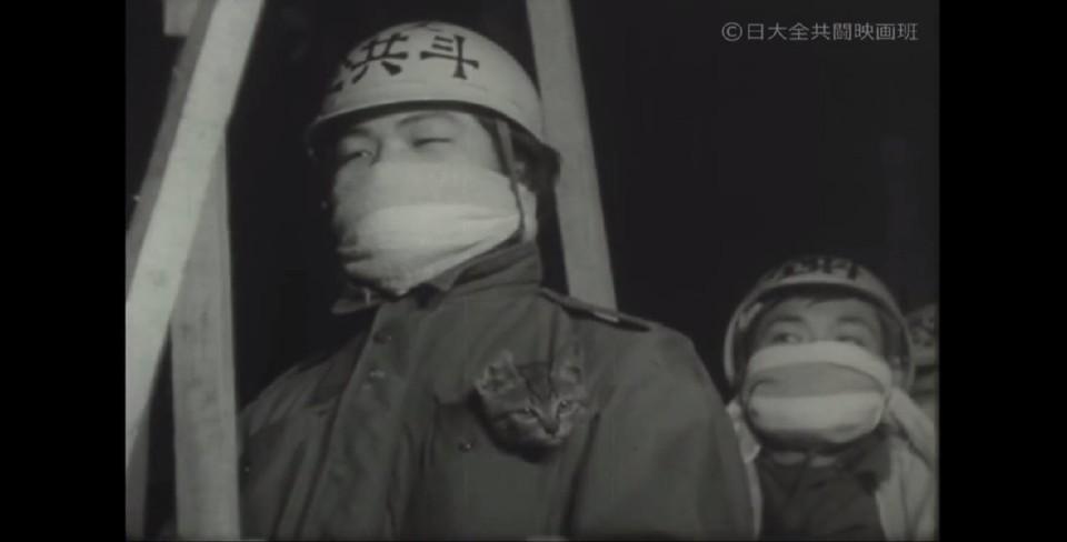 전공투와_고양이.jpg